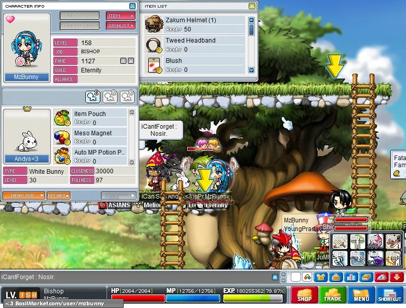 level 30 pet bunny rh basilmarket com MapleStory Penguin Pet MapleStory Panda Pet