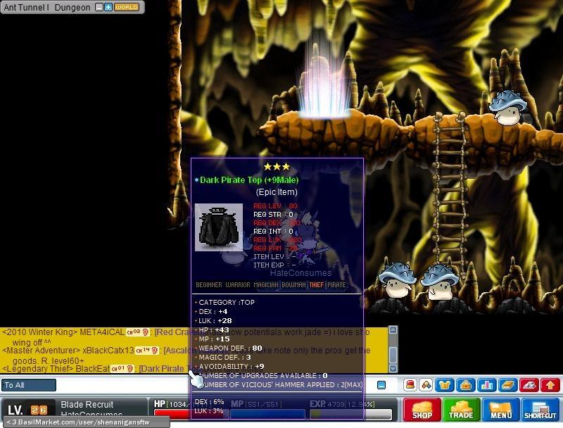 Dark Pirate Top - DEX 6%, LUK 3%